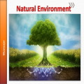 Natural Environment Essays